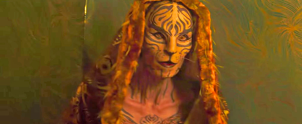 Tigress makeup in The Hunger Games Mockingjay